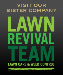 lawn revival team lawn care and weed control